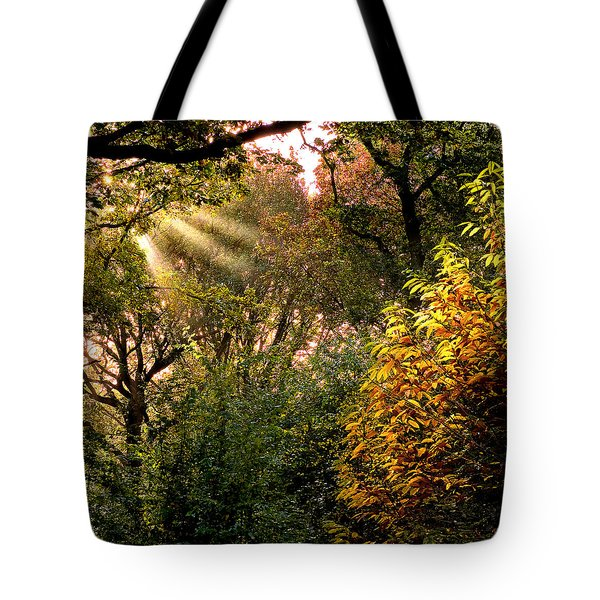 Sun Rays Tote Bag by Trevor Chriss