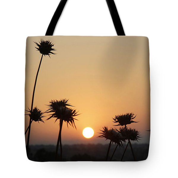 Sun Rise On Bethsaida Tote Bag by Jennifer Kathleen Phillips