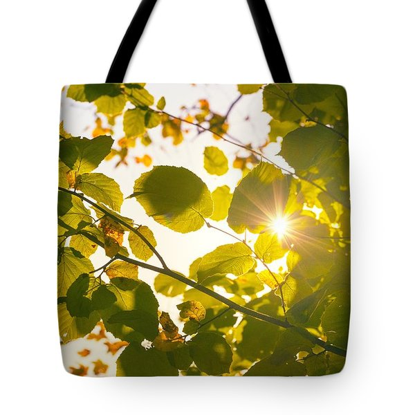 Tote Bag featuring the photograph Sun Shining Through Leaves by Chevy Fleet