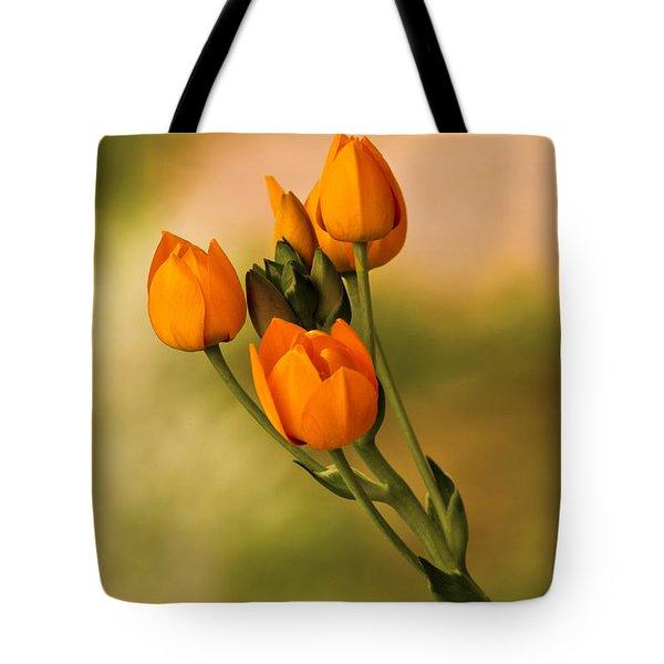 Sun Star Flower Tote Bag