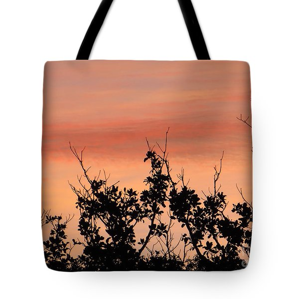 Sun Up Silhouette Tote Bag by Joy Hardee