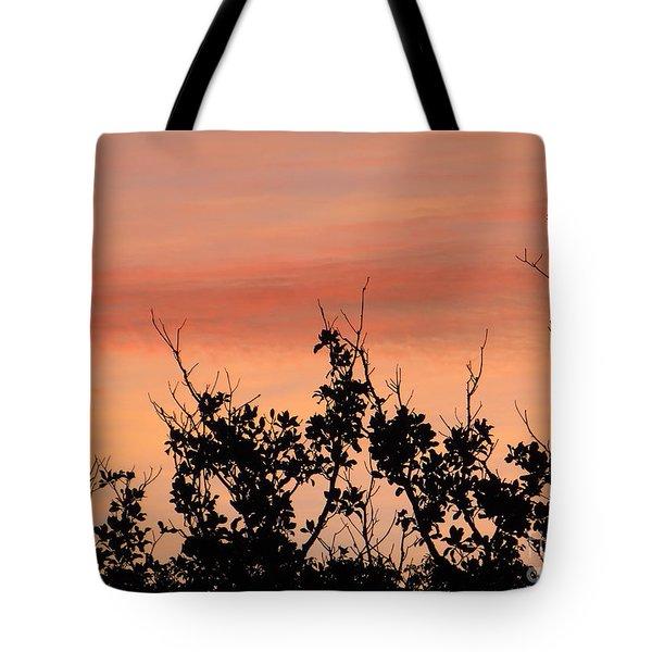 Sun Up Silhouette Tote Bag