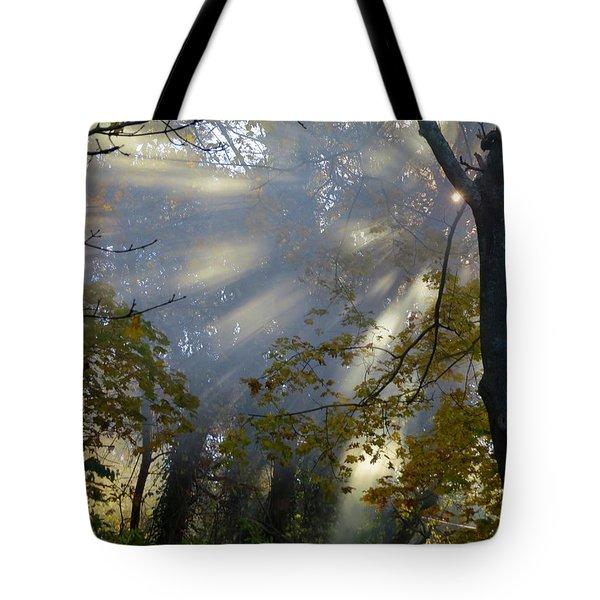 Sunbeam Morning Tote Bag by Dianne Cowen