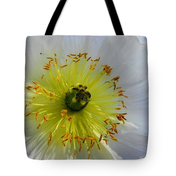Tote Bag featuring the photograph Sunburst by Deb Halloran