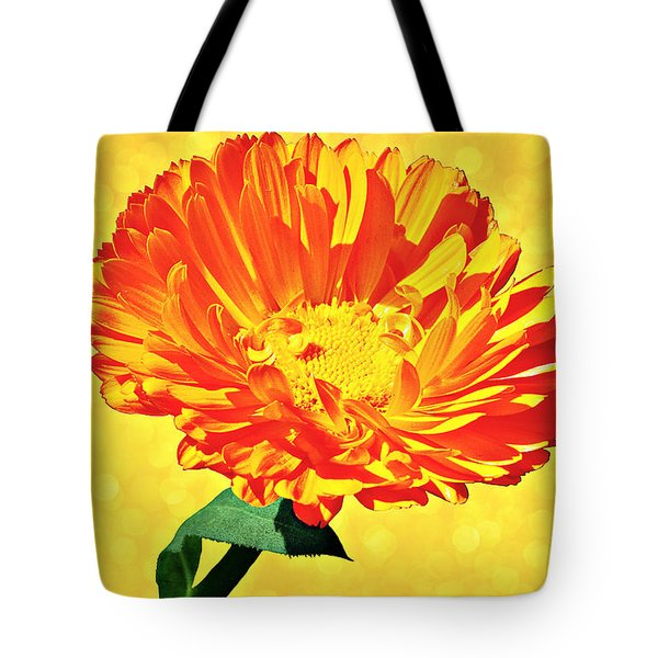 Sunburst Tote Bag by Elizabeth Winter