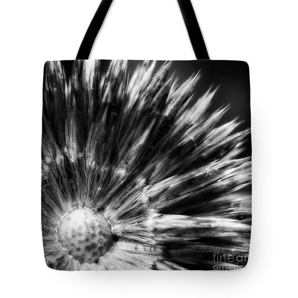 Tote Bag featuring the photograph Sunburst by Inge Riis McDonald