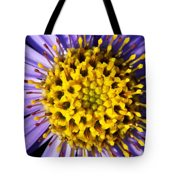 Tote Bag featuring the photograph Sunburst by Wendy Wilton