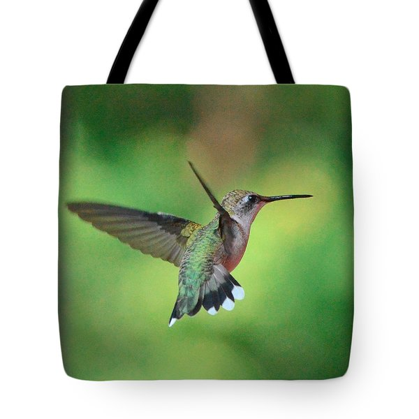 Suncatcher Tote Bag by Amy Porter