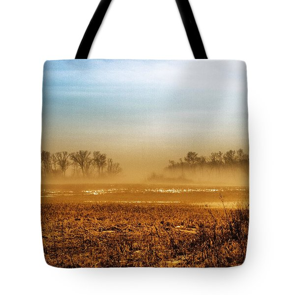 Sunday Afternoon Tote Bag by Tom Druin