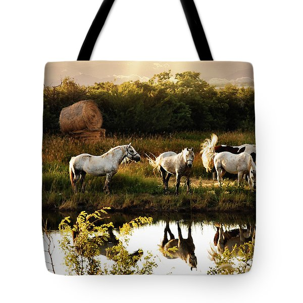 Tote Bag featuring the photograph Sundown by Elaine Manley