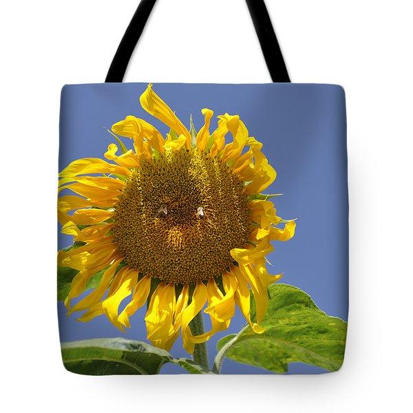 Sunflower At Latrun Tote Bag