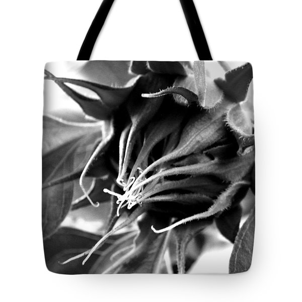 Tote Bag featuring the photograph Sunflower Beginning by Sandi OReilly