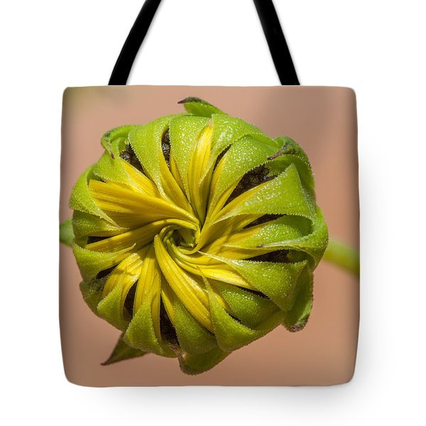 Sunflower Bud Opening Tote Bag