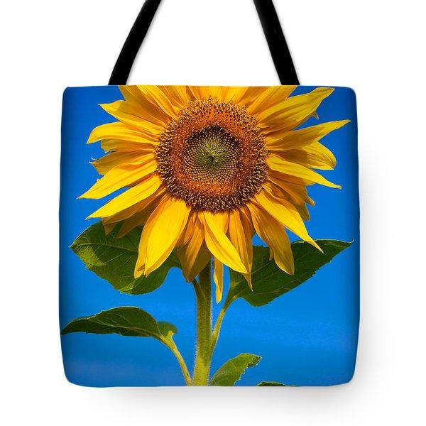 Sunflower Tote Bag by Carsten Reisinger