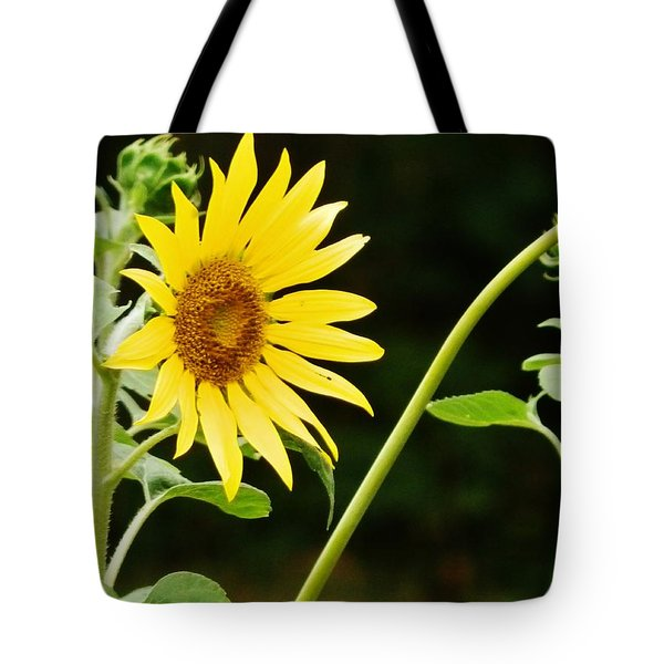 Sunflower Cheer Tote Bag