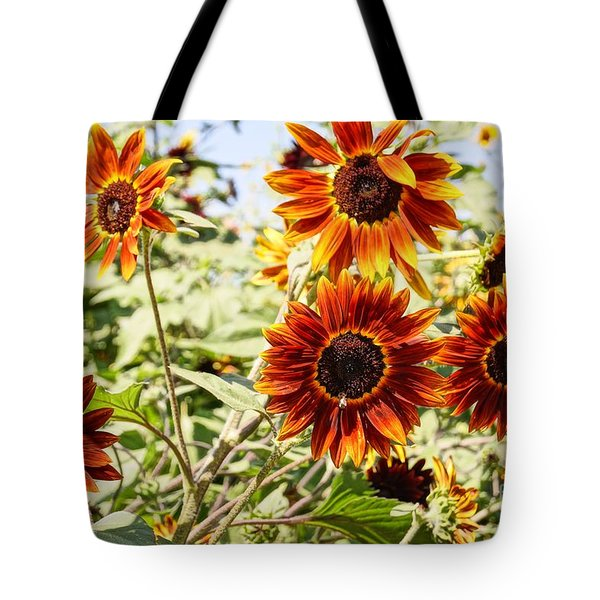 Sunflower Cluster Tote Bag by Kerri Mortenson