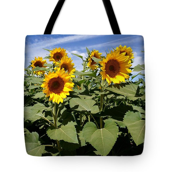 Sunflower Field Tote Bag by Kerri Mortenson