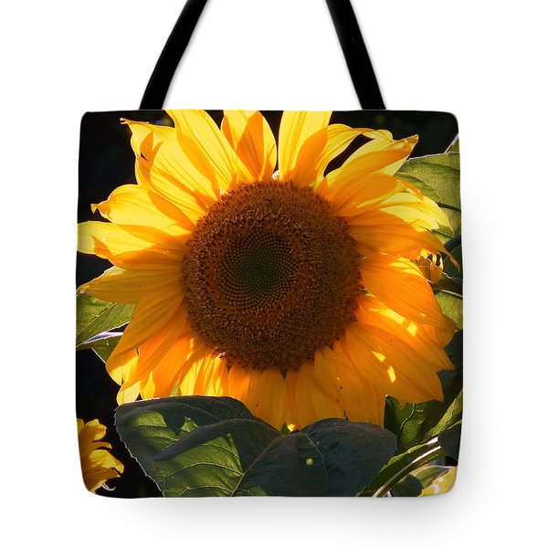 Sunflower - Golden Glory Tote Bag by Janine Riley