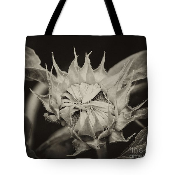 Sunflower Grand Opening Tote Bag by Wilma  Birdwell