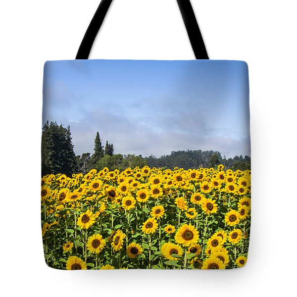 Sunflower Horizon Tote Bag