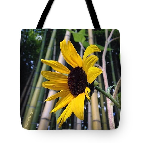 Sunflower In A Bamboo Forest Tote Bag by Anna Porter