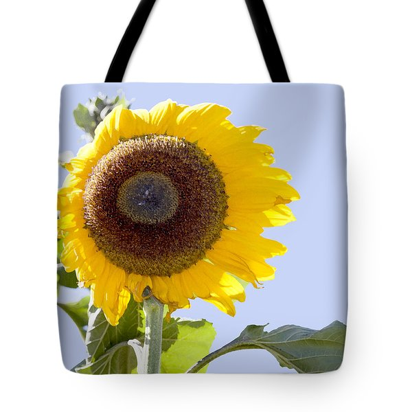 Tote Bag featuring the photograph Sunflower In The Blue Sky by David Millenheft
