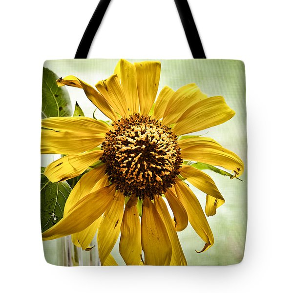 Tote Bag featuring the photograph Sunflower In Window by Greg Jackson