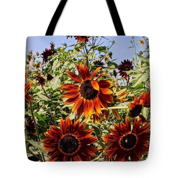 Sunflower Layers Tote Bag by Kerri Mortenson