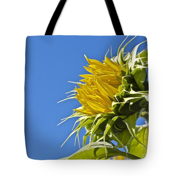 Tote Bag featuring the photograph Sunflower by Linda Bianic
