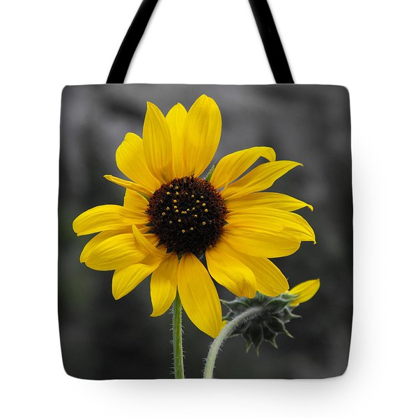Sunflower On Gray Tote Bag by Rebecca Margraf