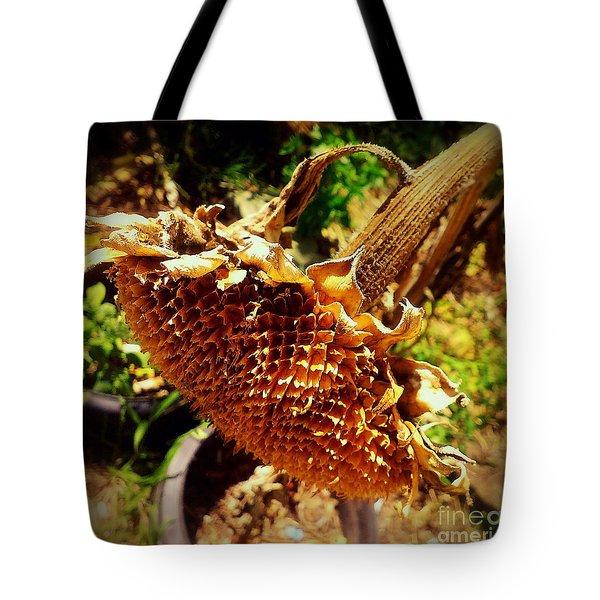 Sunflower Seedless 1 Tote Bag by James Aiken