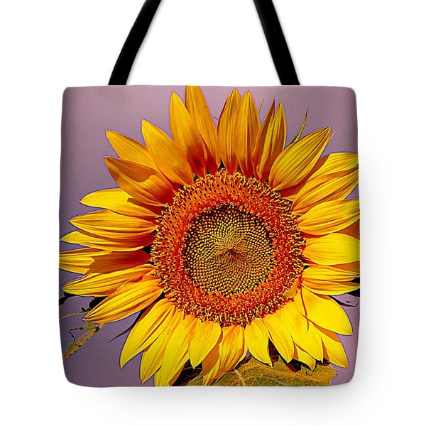 Sunflower Time Tote Bag