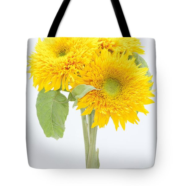 Sunflower Trio Tote Bag by Anne Gilbert
