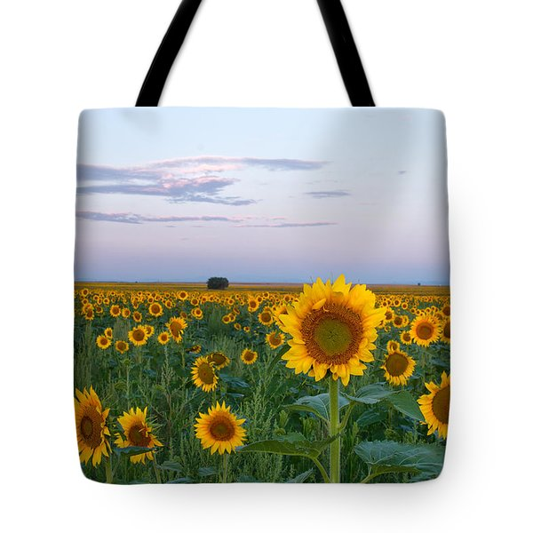 Sunflowers At Sunrise Tote Bag