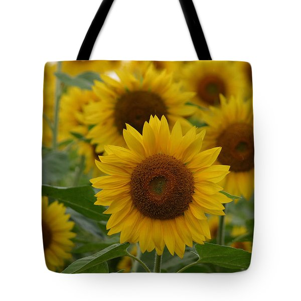 Sunflowers At The Farm Tote Bag by Denyse Duhaime