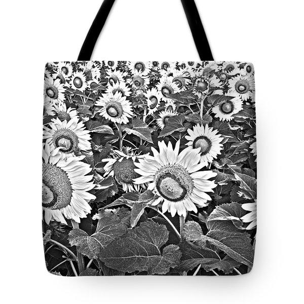 Sunflowers Tote Bag by Elena Nosyreva