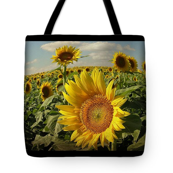 Kansas Sunflowers Tote Bag