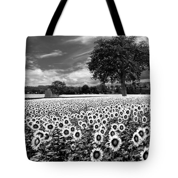 Sunflowers In Black And White Tote Bag by Debra and Dave Vanderlaan