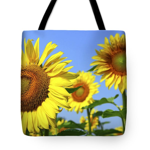Sunflowers In Field Tote Bag by Elena Elisseeva
