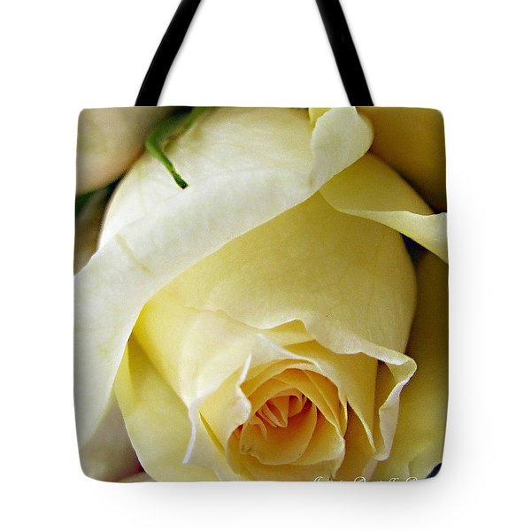 Sunkissed Yellow Rose Tote Bag by Danielle  Parent