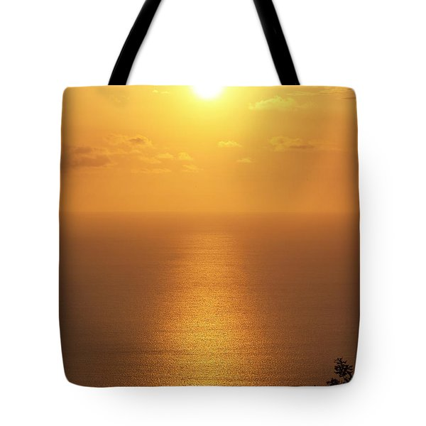 Sunlight Tote Bag by Athala Carole Bruckner