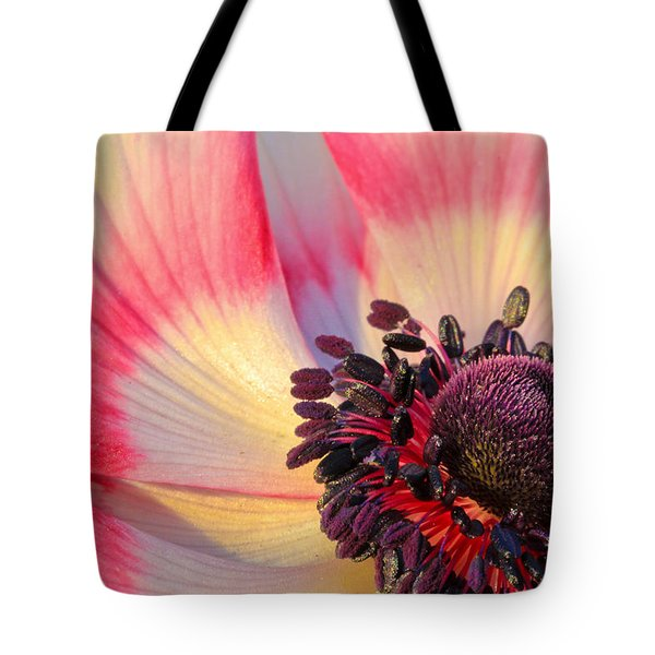 Sunlight Just Right Tote Bag
