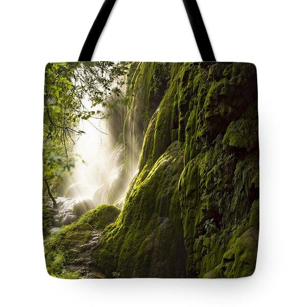 Gorman Falls Ray Of Light Tote Bag