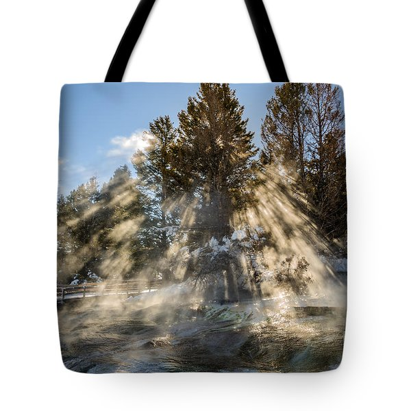 Sunlight Through The Trees 2 Tote Bag by Sue Smith