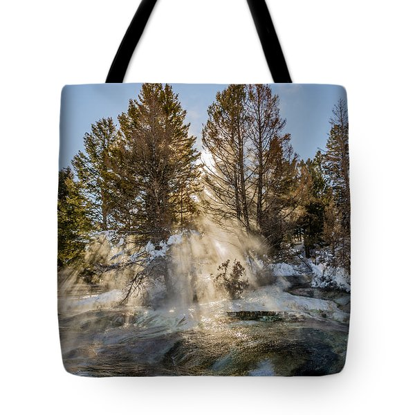 Sunlight Through The Trees Tote Bag
