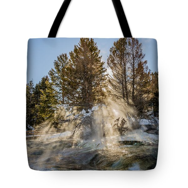 Sunlight Through The Trees Tote Bag by Sue Smith
