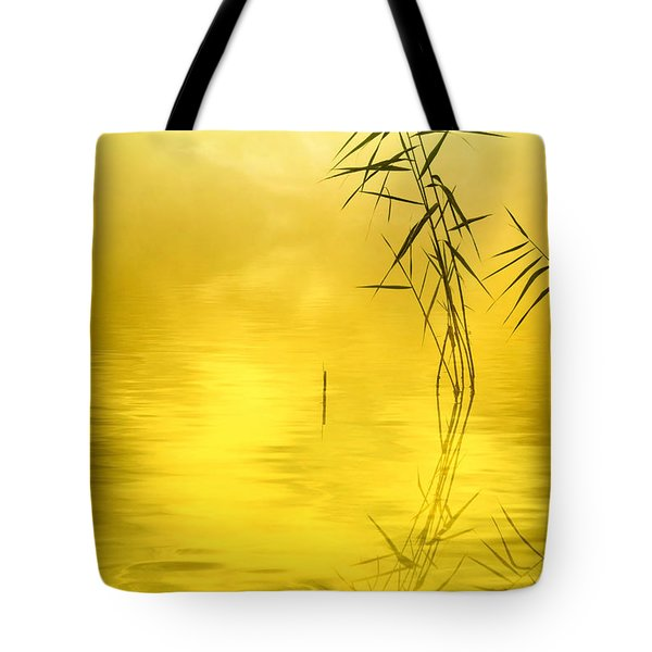 Sunlight Tote Bag by Veikko Suikkanen