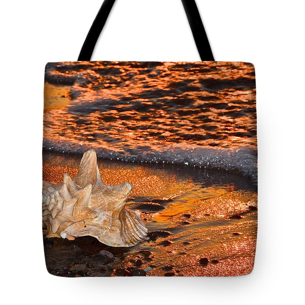 Sunlights Glow Tote Bag by Frozen in Time Fine Art Photography