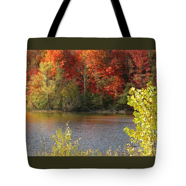Tote Bag featuring the photograph Sunlit Autumn by Ann Horn
