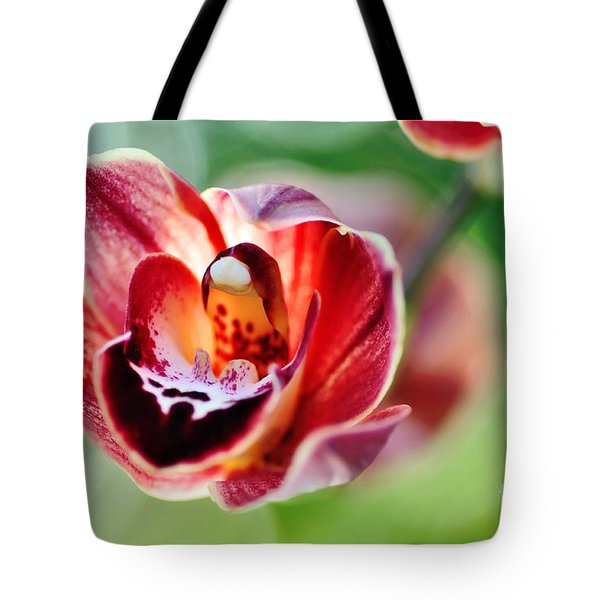 Sunlit Miniature Orchid Tote Bag by Kaye Menner